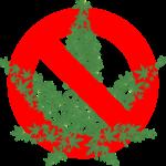 Warum ist Brennesseljauche in Frankreich verboten?