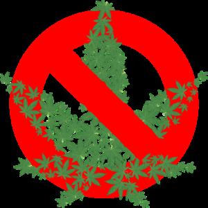 brennnessel verboten frankreich