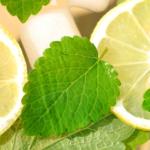 Brennesselsirup Sommergetränk – Wirkung & selber machen